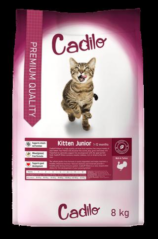 Cadilo-Kitten