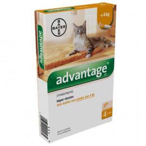 advantage-nr-40-vlooienmiddel-voor-katten