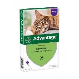 advantage-nr-80-vlooienmiddel-voor-katten