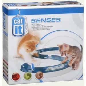cat-it-senses-play-circuit