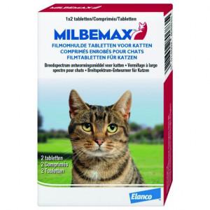milbemax-grote-kat