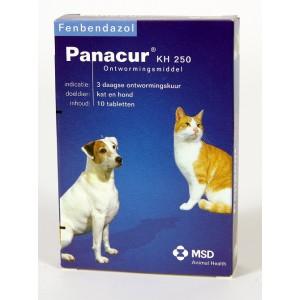 panacur-kh-250-ontwormingsmiddel-voor-hond-en-kat